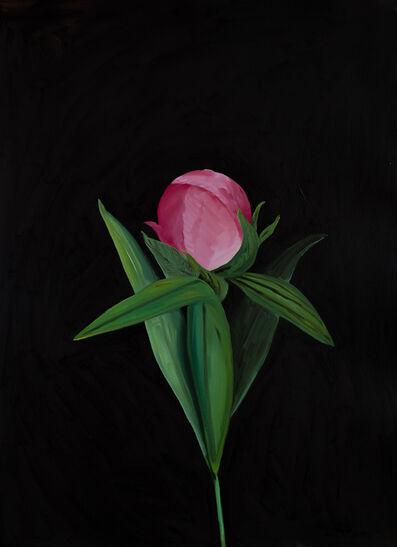 Sarah Osborne, 'Night Flower', 2018