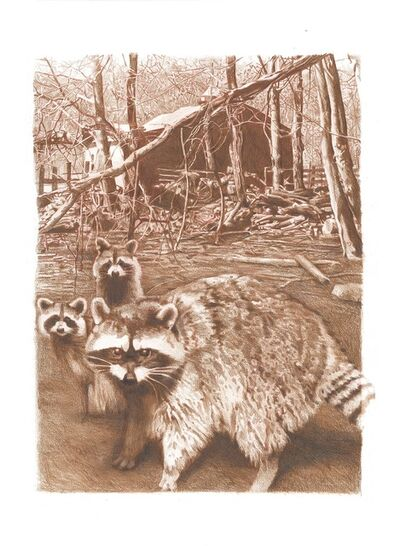 Mary Snowden, 'Coon Family'