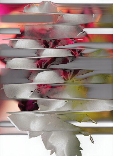 Leigh Blanchard, 'Pink Flower 2.2', 2019