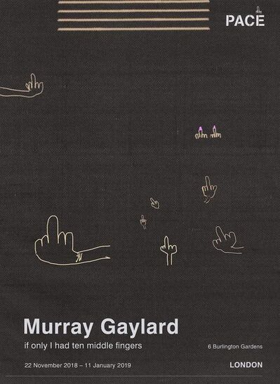 Murray Gaylard, 'If only I had ten middle fingers', 2019