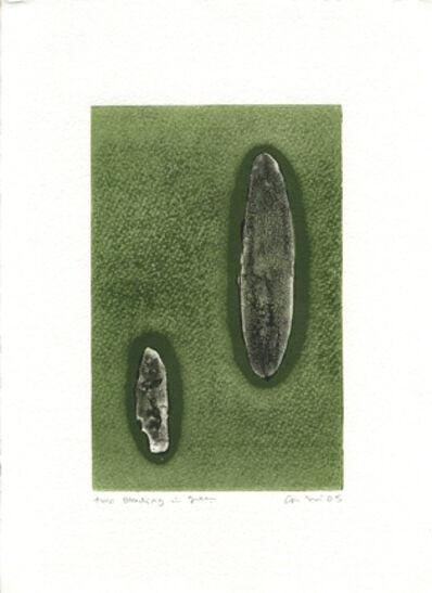 Carolina Sardi, 'Two Bleeding into Green', 2005