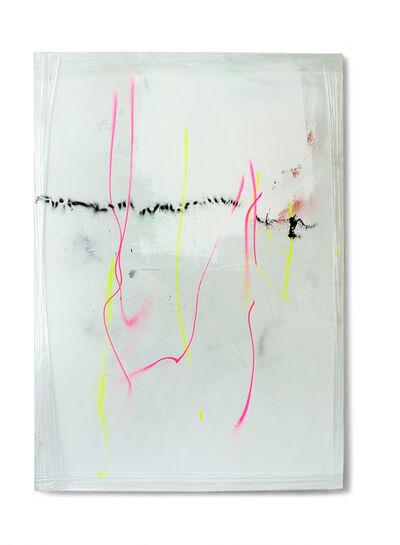 Michaela Zimmer, '130601', 2013