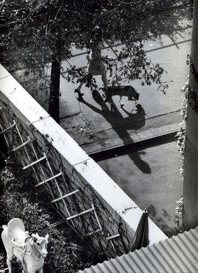 André Kertész, 'New York ( Woman Walking Dog)', 1962