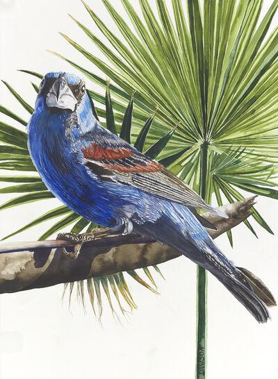 Carol Dawson, 'Blue Grosbeak with Fan Palm', 2019