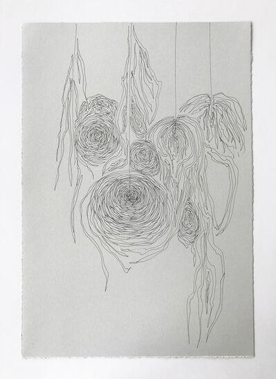 Mary Simpson, 'Ranunculus', 2018