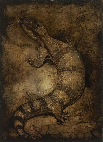 Willem van den Berg, 'The Lizard'