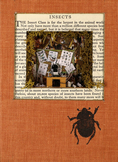 laura beaumont, 'Insect Book for the Pocket', 2015