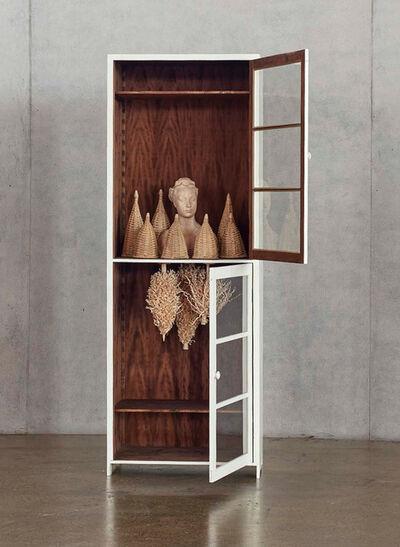 Paloma Varga Weisz, 'Bois Dormant - Cabinet 5', 2015