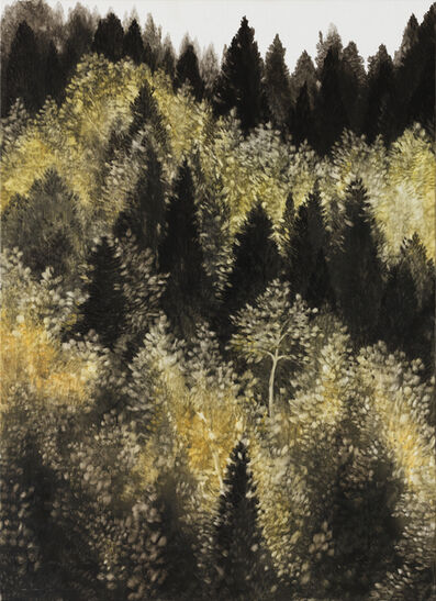 So Young Kwon, 'Forest', 2017
