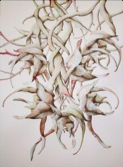 Miron Schmuckle, 'Florilegium  Folio IV', 2012