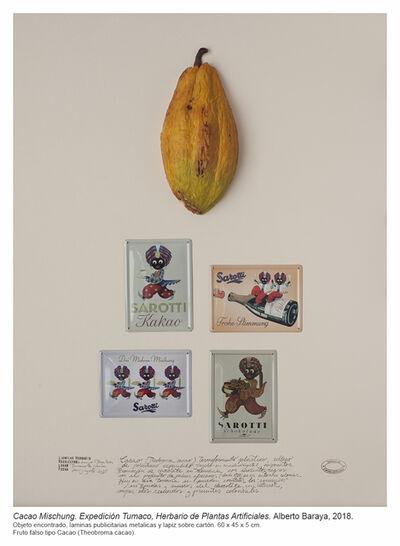 Alberto Baraya, 'Cacao Mischung. Espedición Tumaco (Herbario de Plantas Artificiales', 2018