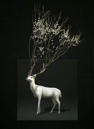 Todd Murphy, 'Untitled (Flowering Branch Stag)', 2018-2019