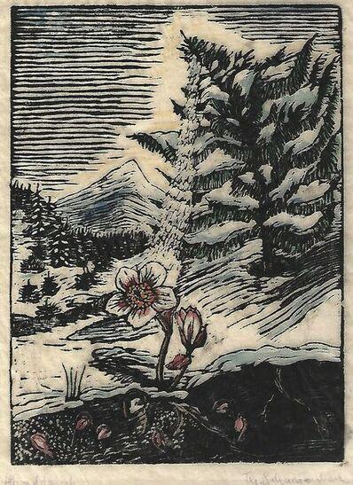 Thea Schanzenbach, 'untitled', 1927