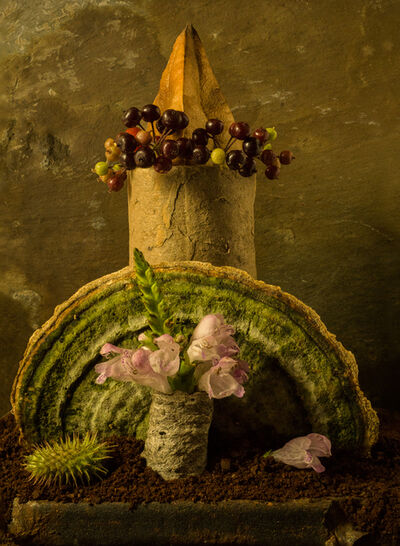 Allan Markman, 'Still Life with Mushroom and Berries'