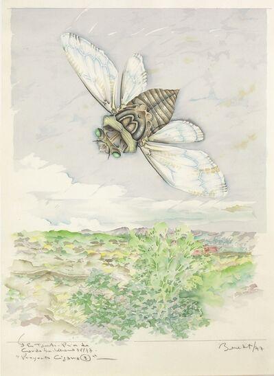 Luis F. Benedit, 'Proyecto Cigarra 3', 1977