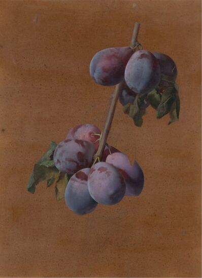 Josep Mirabent, 'Branch with plums', ca. 1870