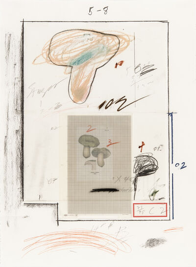 Cy Twombly, 'Natural History Part I N° III', 1974