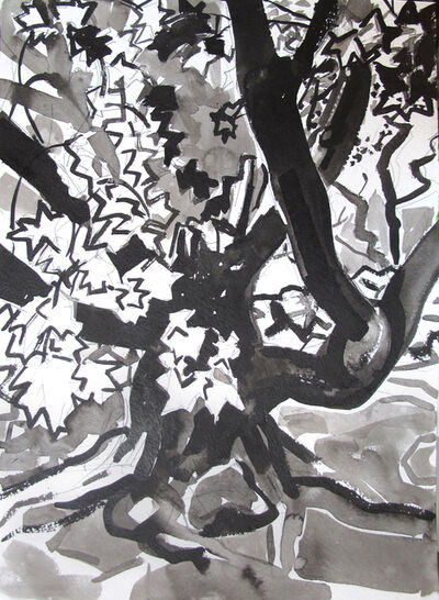 Dena Schutzer, 'Tree', 2019