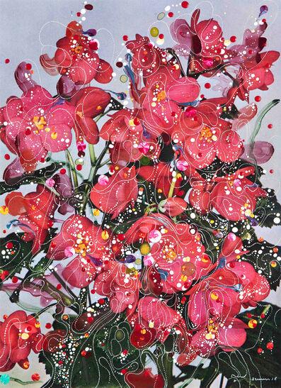 Sebastiaan Bremer, 'Begonia Elatior Hybrida Baardse's Wonder', 2018