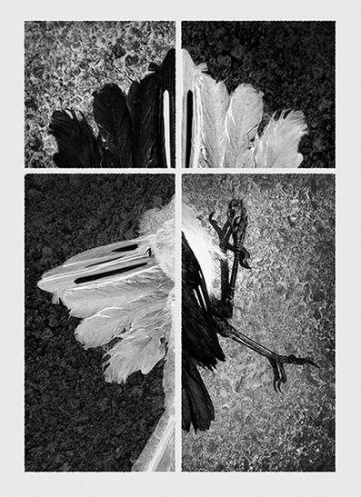 Jose Ney, 'Unfinished Space 20', 2006
