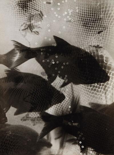 Heinz Hajek-Halke, 'Träumende Fische (Dreaming fish)', circa 1950