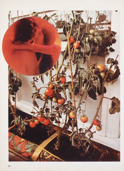 Wade Guyton, 'The Tomato Lovers ', 2006