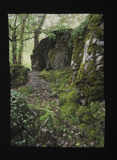 Carol Shinn, 'Mossy Path', 2020