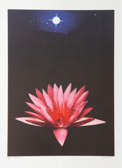 Michael Knigin, 'Lone Lily', 1999