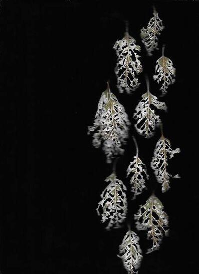 Renee Monteiro Bernard, 'Autumn Lace', 2018