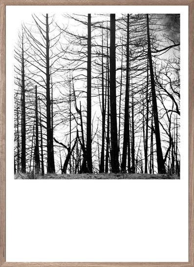 Gregers Heering, 'Silhouettes', 2016