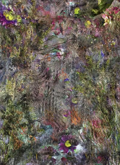 Abelardo Morell, 'Flowers for Lisa #24', 2016