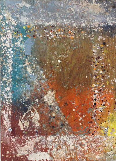 Fredrik Værslev, 'Shelf Paintings (Dew Problems) #02', 2011