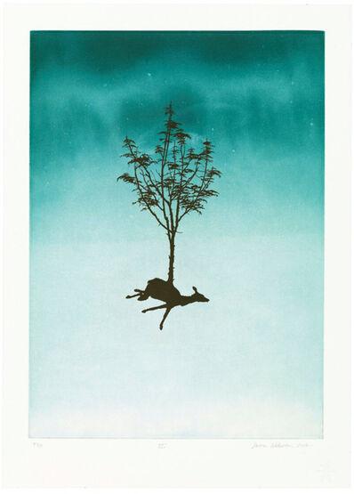 Darren Waterston, 'Plate II from the portfolio A Swarm, A Flock, A Host', 2012
