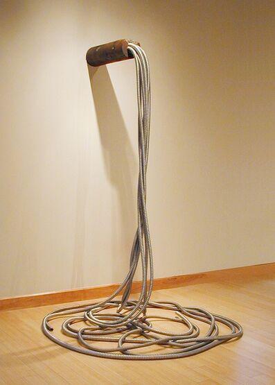 Carol Boram-Hays, 'Vena Cava', 2010