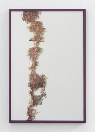 Adrien Missika, 'Cactus Frottage H', 2012