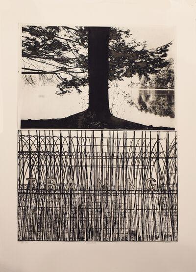 Jim Nickel, 'Cross Training, A53', 2001