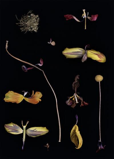 Luzia Simons, 'Blacklist 113', 2013