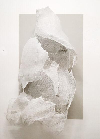 Riccardo Previdi, 'Cocoon (esoscheletro)', 2016