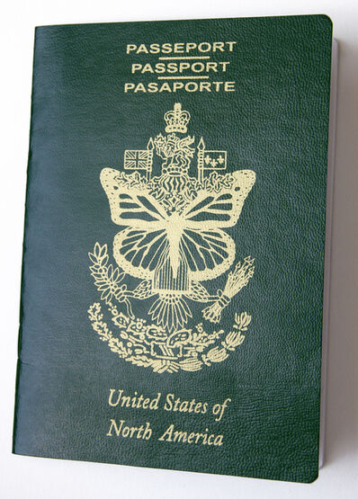 Erika Harrsch, 'United States of North America Passport', 2016