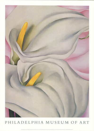 Georgia O'Keeffe, 'Two Cala Lilies on Pink', 1990