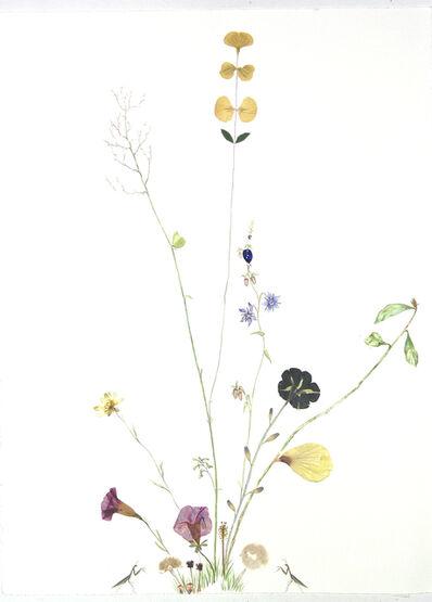 Marilla Palmer, 'Fruit of the Blue Borage', 2018
