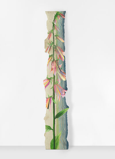 Jason Middlebrook, 'Found in a Pine Forest', 2019