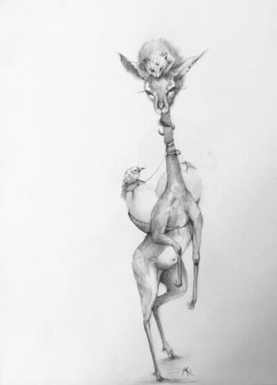 Adonna Khare, 'Impala'