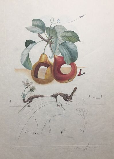 Salvador Dalí, 'Fruit With Holes', 1969