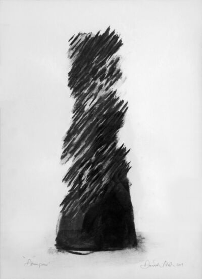 David Nash, 'Downpour', 2004