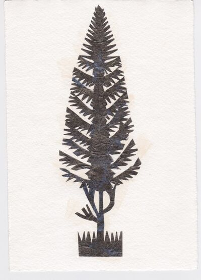 Victoria Behm, 'Pine Tree', ca. 2011