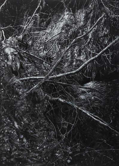Javier Pérez, 'El Desamparo I', 2020