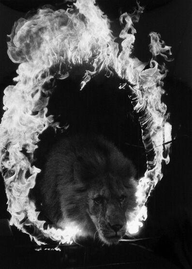 Akira Tanno, 'Sad Eyes, Kigure Circus', 1957-vintage print