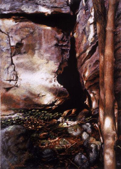 Adrian Deckbar, 'Bluff Wall', 2003