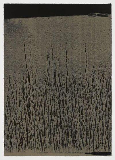 Richard Long, 'Low Tide', 2018